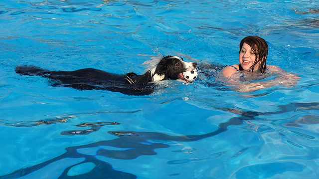 girl teaching a dog to swim